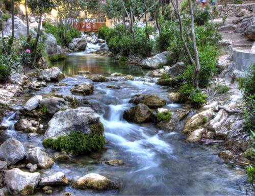 31 de julio   Excursión a Les Fonts de l'Algar